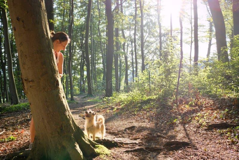 Mujer detrás de un tronco de árbol que mira abajo a su perro fotografía de archivo