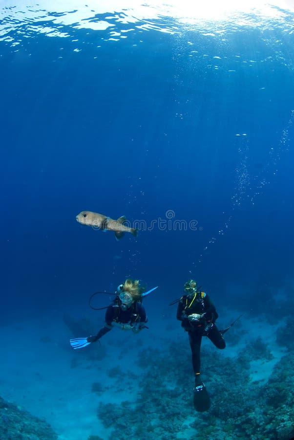 Mujer dos con un pescado imagenes de archivo
