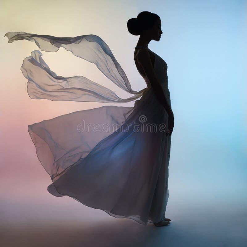 Mujer elegante de la silueta en vestido que sopla imagen de archivo libre de regalías