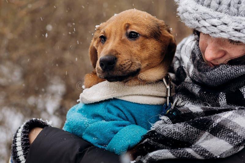 Mujer elegante del inconformista que juega con el perrito lindo en wint frío nevoso foto de archivo