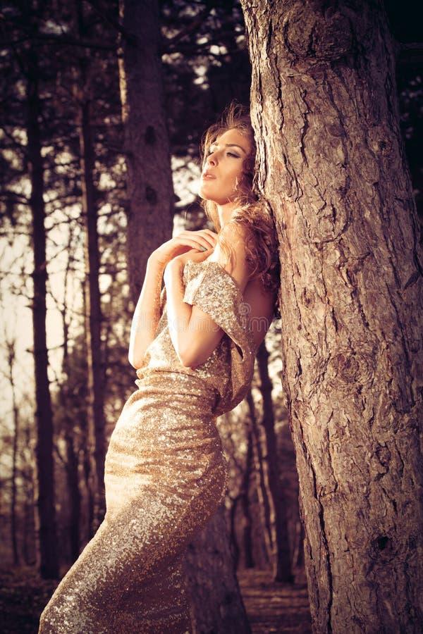 Mujer elegante en madera imagen de archivo