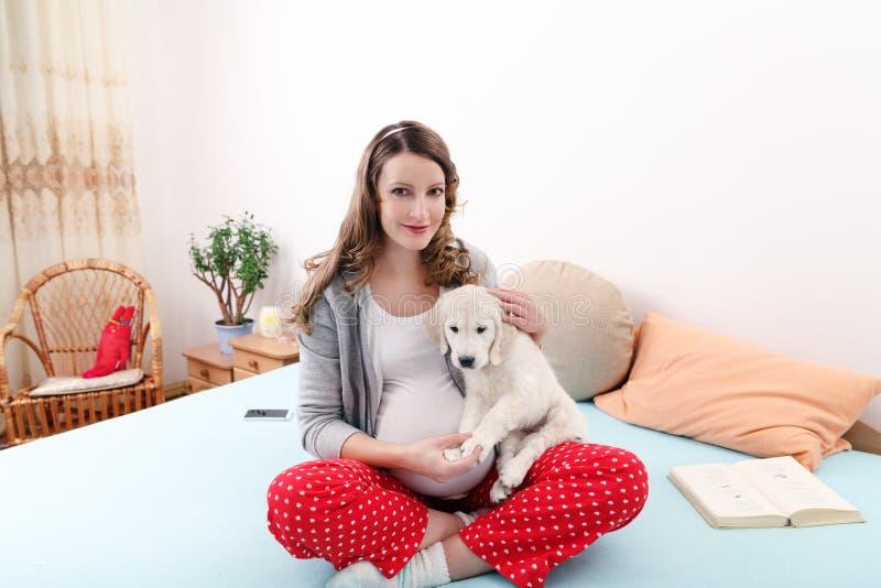 Mujer embarazada con su perro en casa foto de archivo libre de regalías