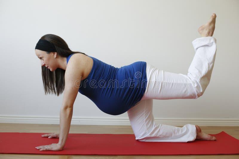 Mujer embarazada de los jóvenes que hace ejercicio del músculo de la pierna. imagenes de archivo