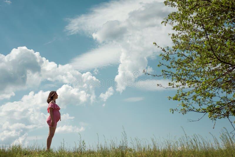 Mujer embarazada de los jóvenes que lleva el vestido rosado que se opone al cielo con las nubes en día soleado imagenes de archivo