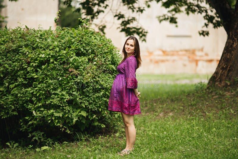 Mujer embarazada hermosa en naturaleza imagenes de archivo