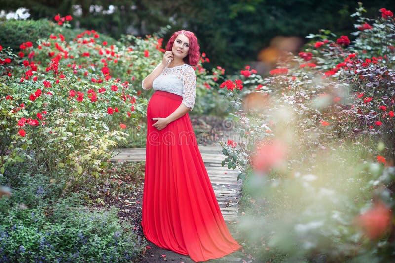 Mujer embarazada joven hermosa que camina en el campo de rosas foto de archivo