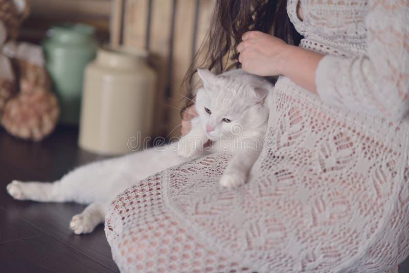 Mujer embarazada y un gato imagenes de archivo