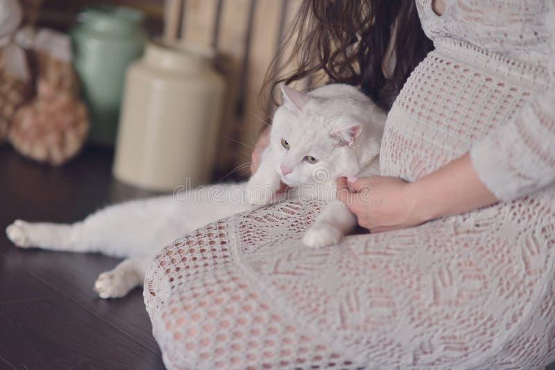 Mujer embarazada y un gato imagen de archivo