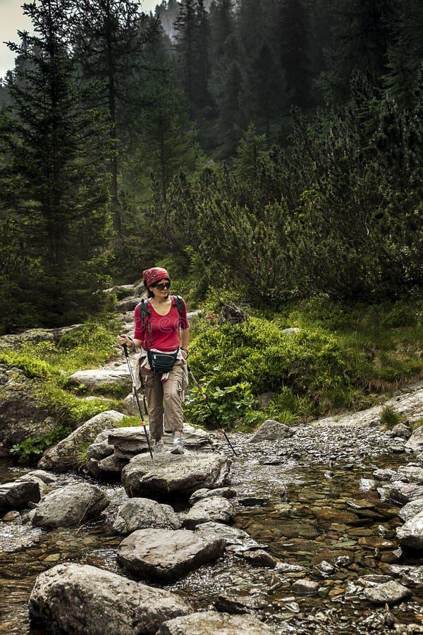 Mujer en bosque foto de archivo libre de regalías