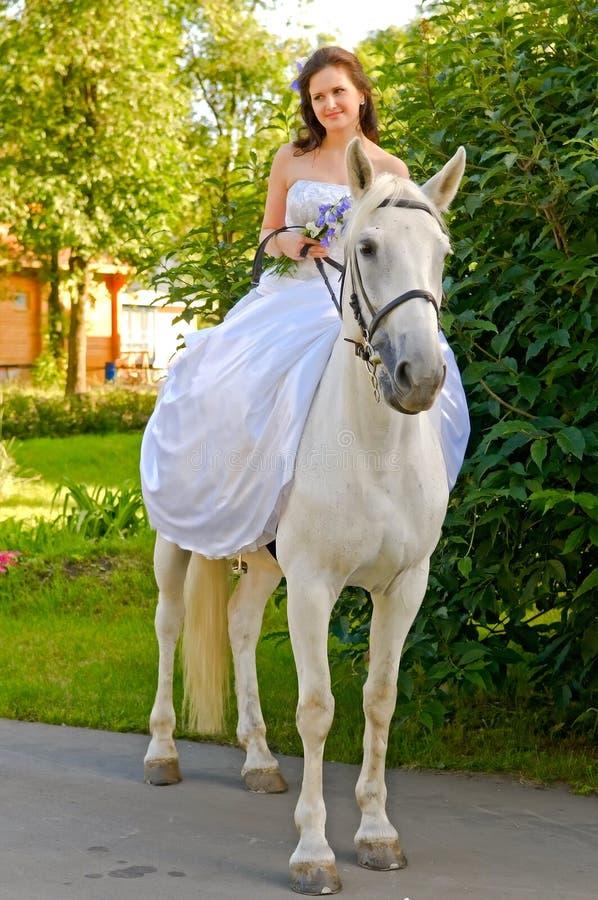 Mujer en caballo imágenes de archivo libres de regalías