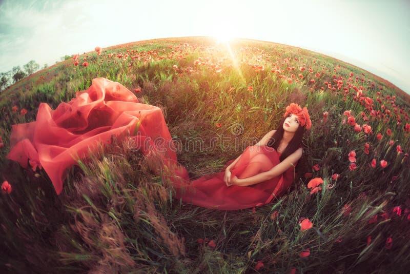Mujer en campo de la amapola de la flor en verano imagen de archivo