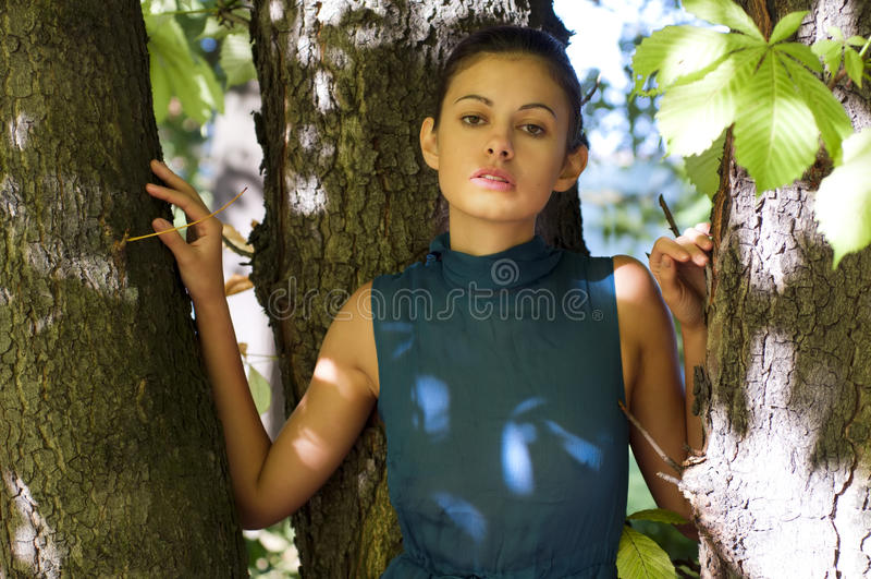 Mujer en el árbol de castaña imagen de archivo libre de regalías