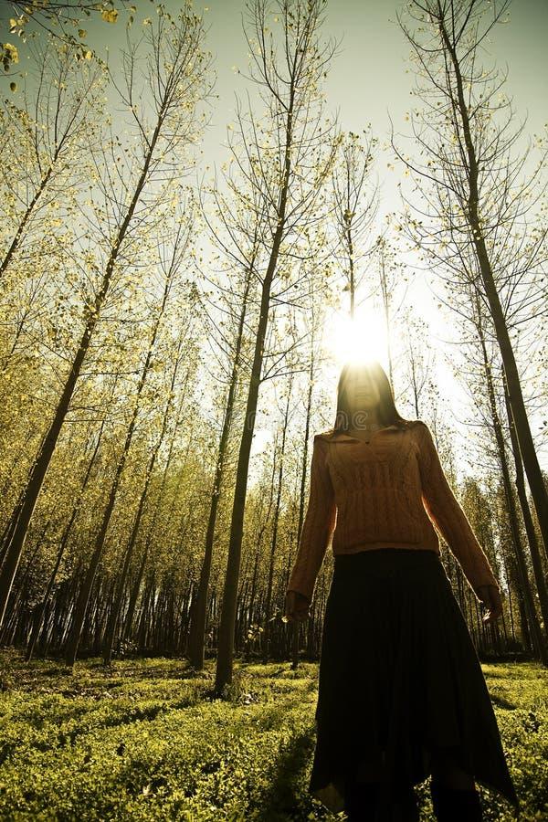 Mujer en el bosque fotografía de archivo libre de regalías