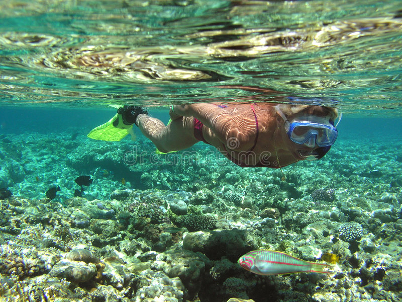 Mujer en el mar imagenes de archivo
