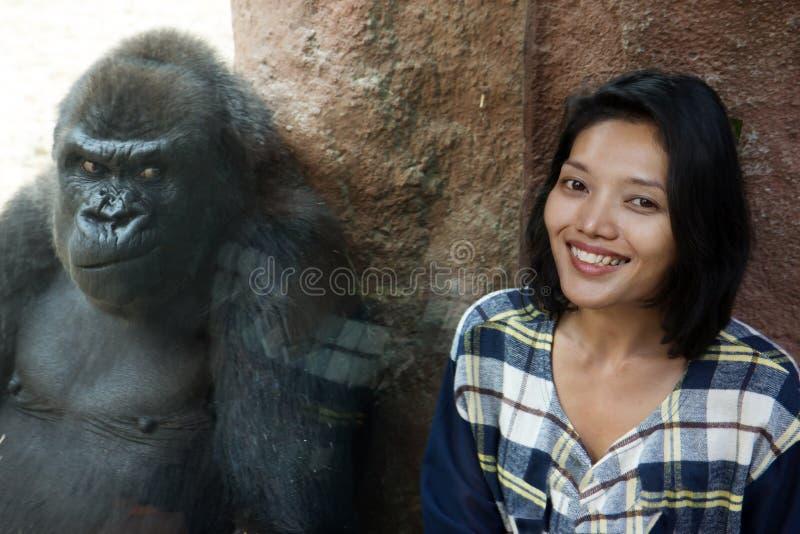 Mujer en el recinto del gorila foto de archivo libre de regalías