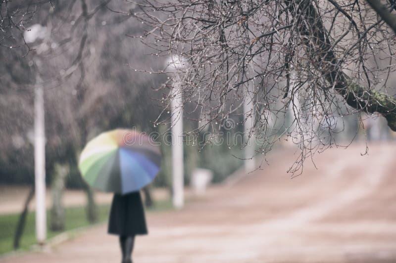 Mujer en la lluvia en el parque foto de archivo libre de regalías