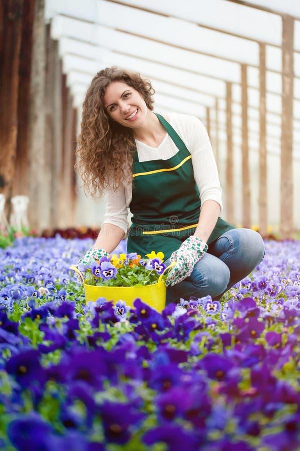 Mujer en un jardín de flores colorido en un invernadero imagen de archivo