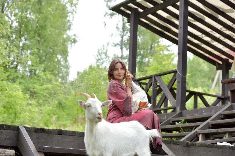 Mujer en un vestido de Borgo?a en una granja con un ganso en sus brazos y una cabra blanca fotos de archivo libres de regalías