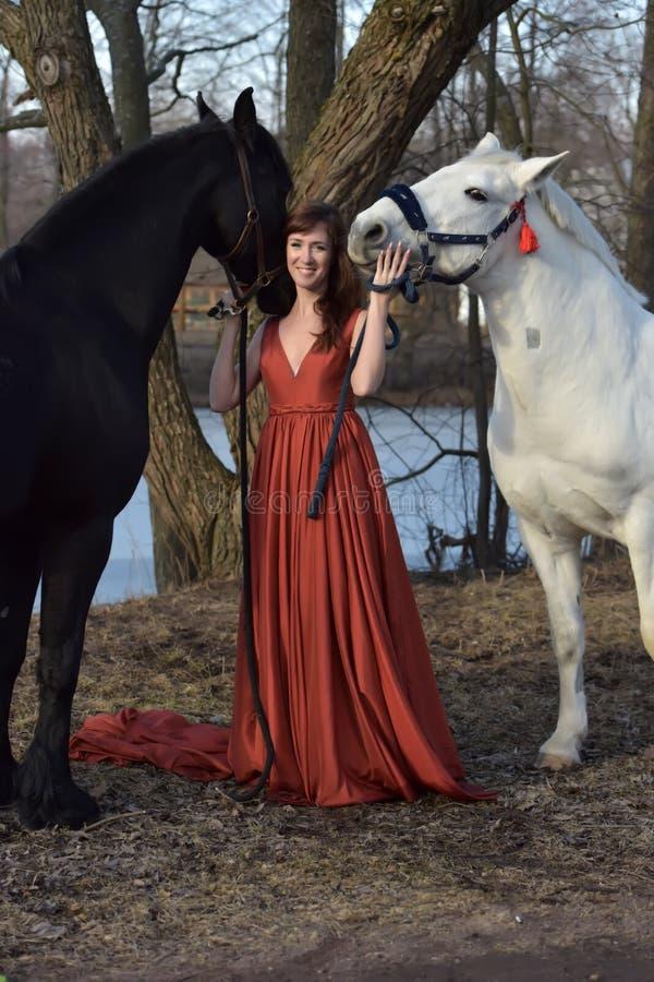 Mujer en un vestido largo rojo con dos caballos fotos de archivo