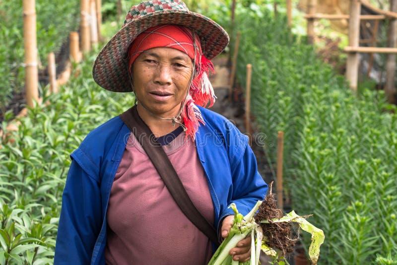 Mujer en una granja fotografía de archivo