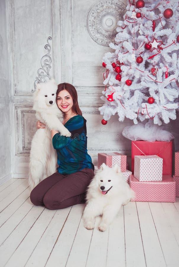 Mujer feliz con el perro del samoyedo en decoraciones de la Navidad fotografía de archivo