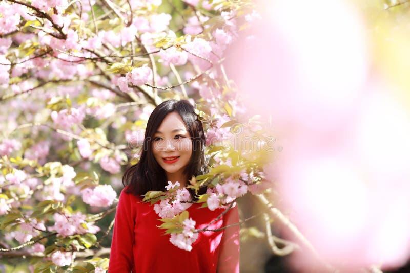 Mujer feliz de la libertad que siente libremente en naturaleza en el verano de la primavera al aire libre foto de archivo
