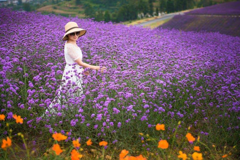 Mujer feliz en campo de la lavanda imagenes de archivo