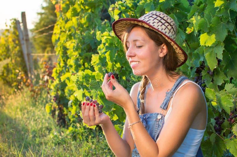 Mujer feliz que come las uvas en viñedo imágenes de archivo libres de regalías