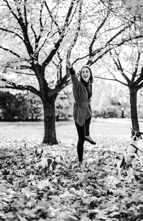 Mujer feliz que juega con los perros al aire libre en otoño imagenes de archivo