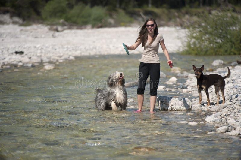 Mujer feliz que juega con sus perros en agua imagen de archivo