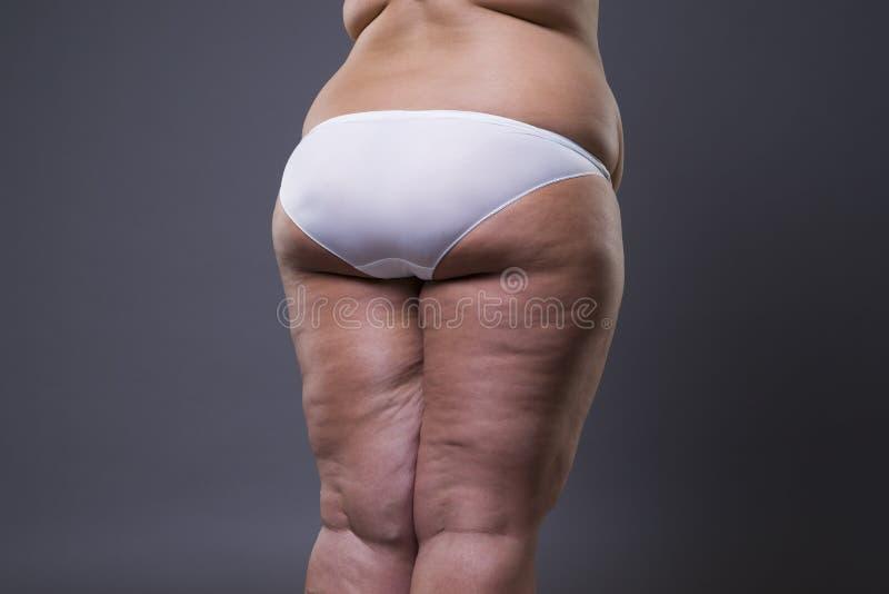 Mujer gorda con las piernas y las nalgas gordas, cuerpo femenino de la obesidad fotos de archivo libres de regalías