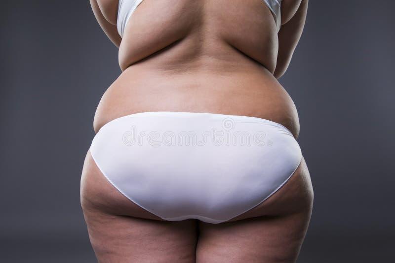 Mujer gorda con las piernas y las nalgas gordas, cuerpo femenino de la obesidad imagen de archivo libre de regalías