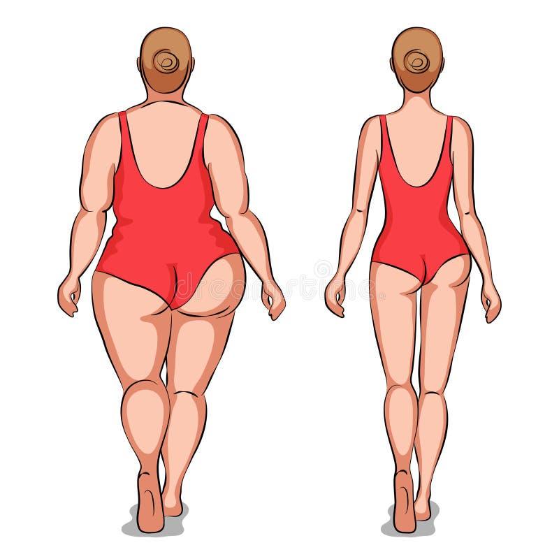 Mujer gorda y mujer delgada ilustración del vector
