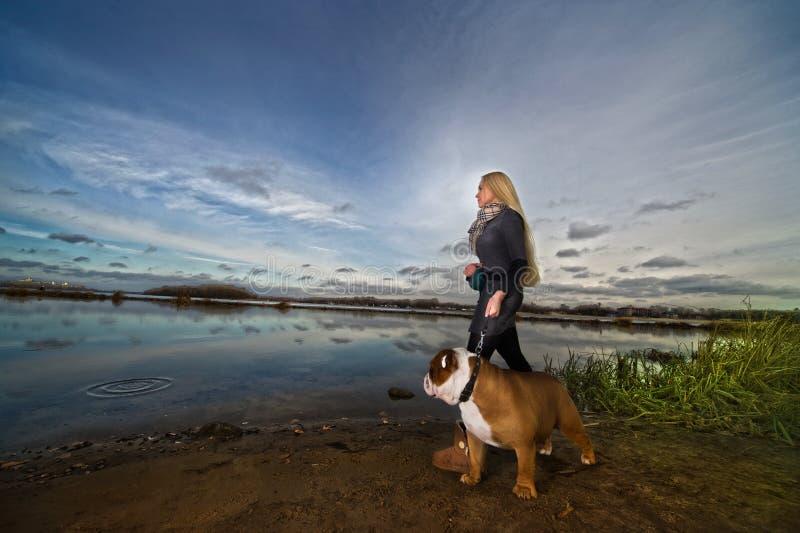 Mujer hermosa con un perro imagen de archivo