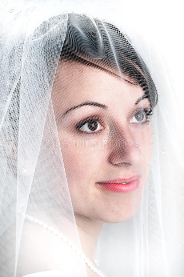 Mujer hermosa del velo nupcial del retrato fotografía de archivo libre de regalías