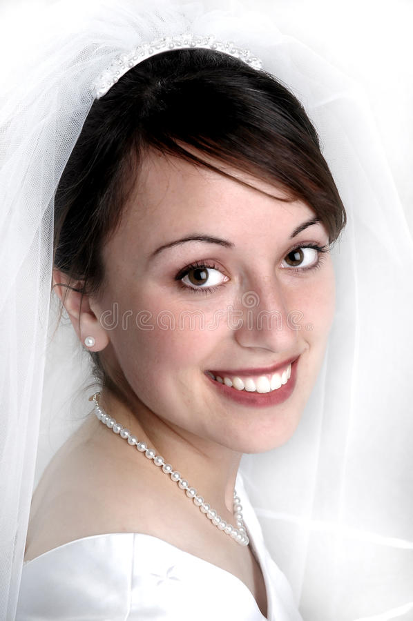 Mujer hermosa del velo nupcial del retrato imagen de archivo libre de regalías