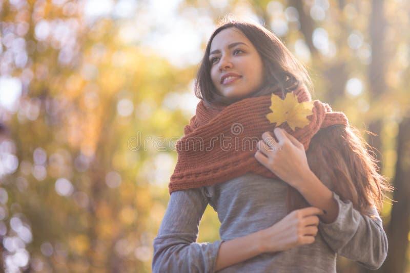 Mujer hermosa en el parque del otoño foto de archivo