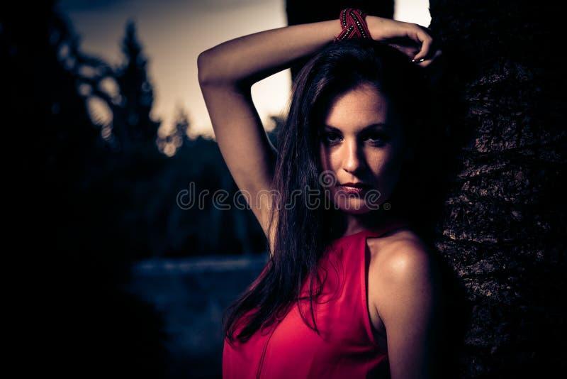 Mujer hermosa en la presentación roja del vestido foto de archivo