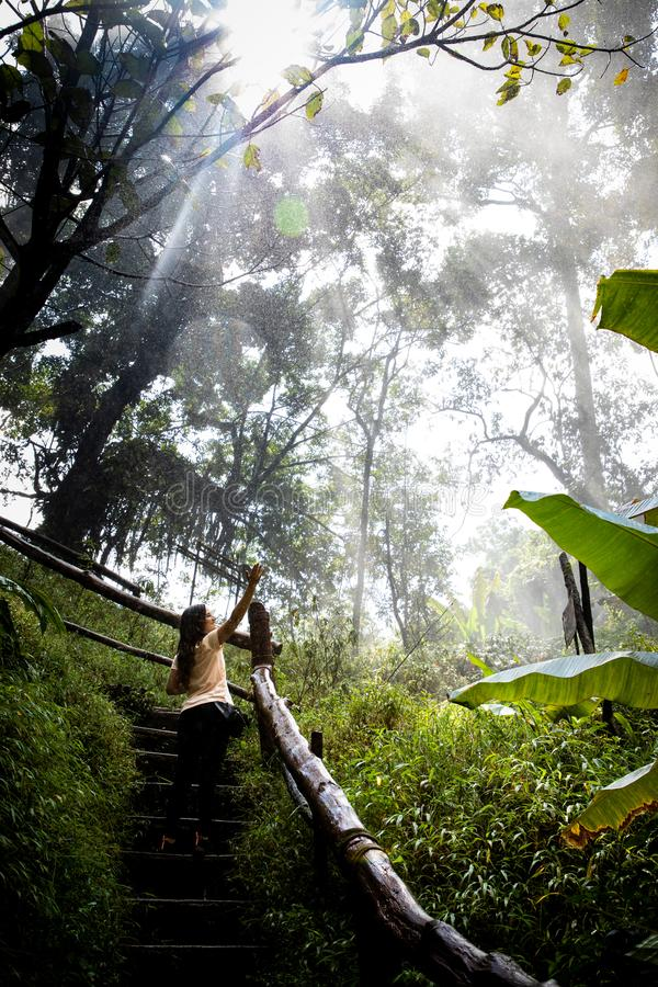 Mujer hermosa en las escaleras en una trayectoria de niebla y mojada de la selva tropical en Chiang Mai y x28; Tailandia foto de archivo libre de regalías
