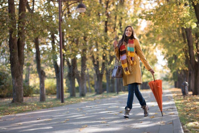 Mujer hermosa en parque del otoño imagen de archivo libre de regalías