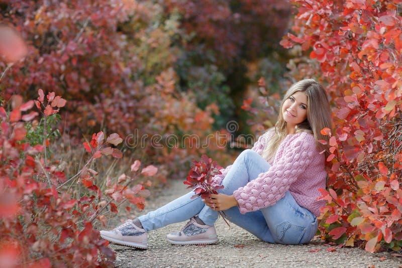 Mujer hermosa en parque del otoño imagen de archivo