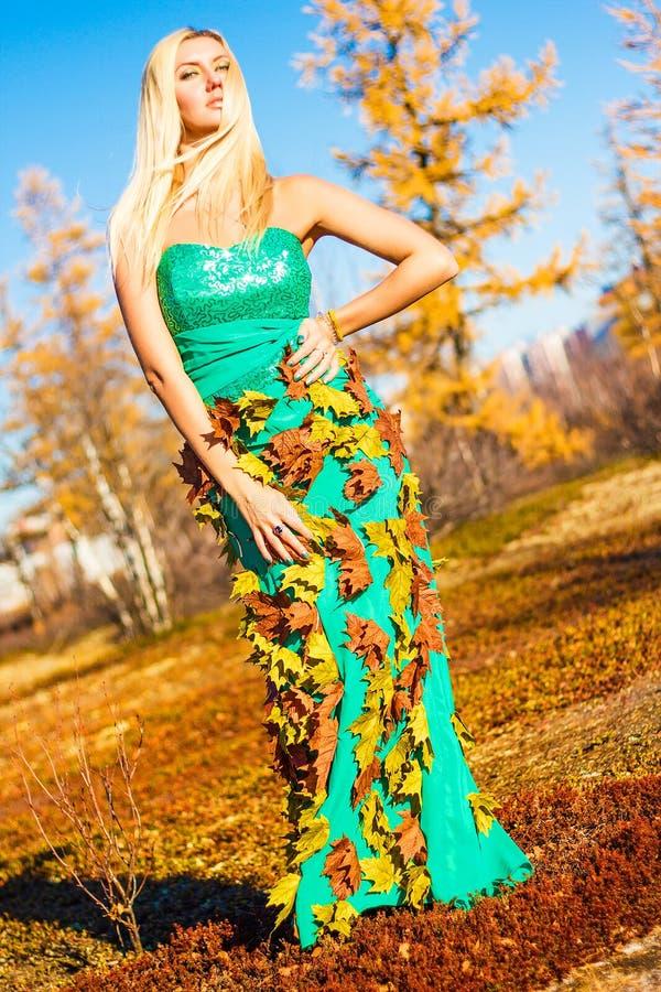 Mujer hermosa en un bosque del otoño imagenes de archivo