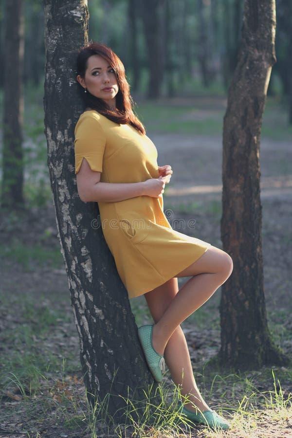 Mujer hermosa en un fondo del bosque fotos de archivo