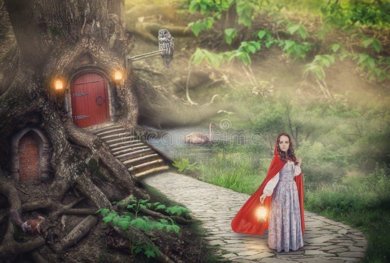 Mujer hermosa en vestido y capa medievales en bosque de la fantasía stock de ilustración