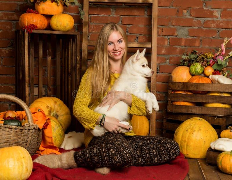 Mujer hermosa feliz con el perrito fornido con la cosecha del otoño en un fondo de la pared de ladrillo imagen de archivo