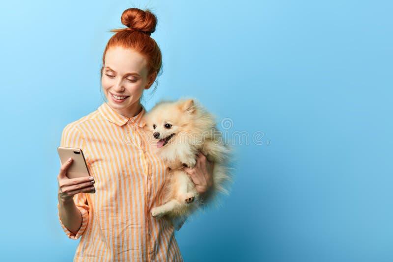 Mujer hermosa feliz en comida de compra de la camisa elegante rayada en línea para su animal doméstico imagen de archivo