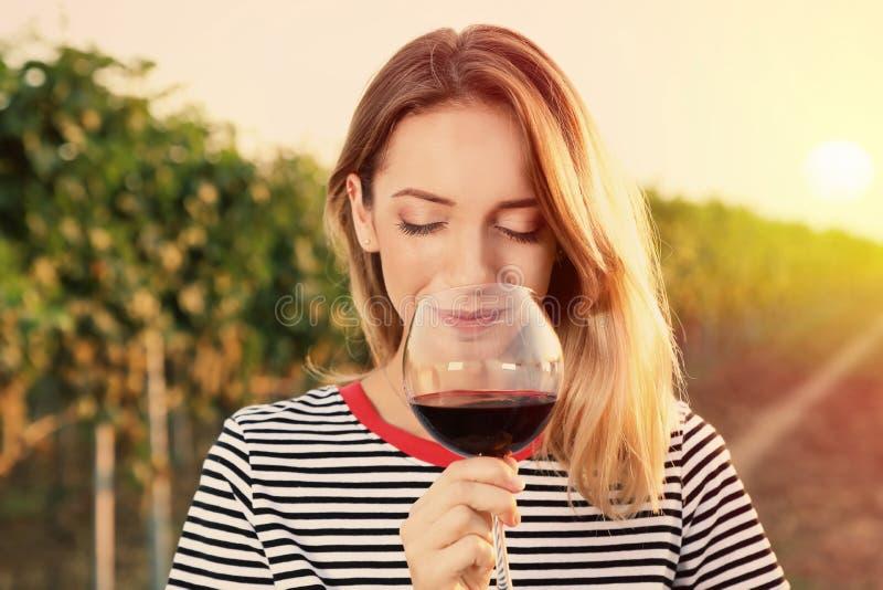 Mujer hermosa joven que goza del vino en el viñedo fotografía de archivo libre de regalías