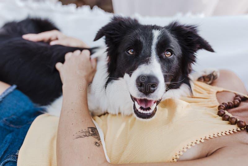 Mujer hermosa joven que miente en la hamaca con su perro del border collie al aire libre Forma de vida de la diversión y del vera imagen de archivo