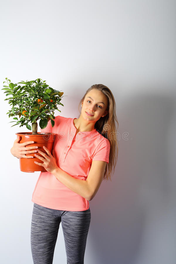 Mujer hermosa joven que sostiene un pote con un pequeño árbol de mandarín foto de archivo libre de regalías