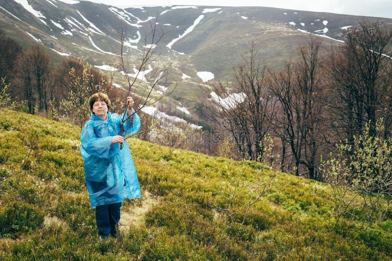 Mujer hermosa mayor del viajero en chaqueta azul de la lluvia y vaqueros en las montañas rodeadas por el bosque, disfrutando de s fotografía de archivo libre de regalías